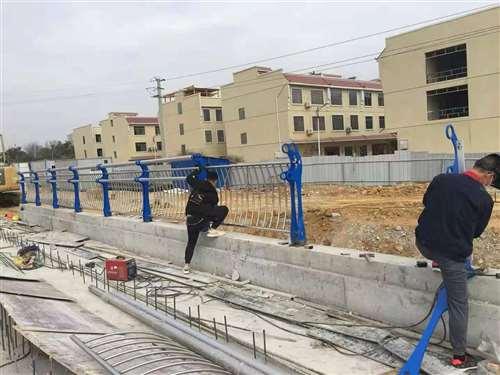 赣州防护栏立柱优质产品