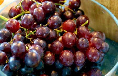德州红巴拉多葡萄水果新鲜