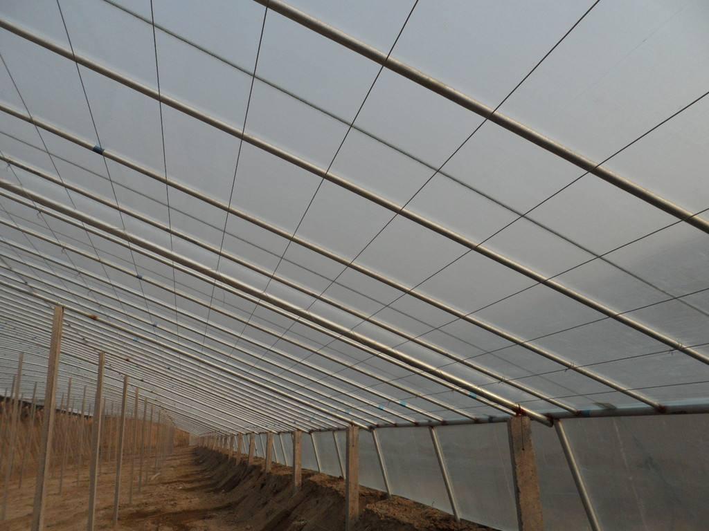 温室大棚型号:gp622,gp625,gp825系列蔬菜温室镀锌钢管连栋大棚,以及